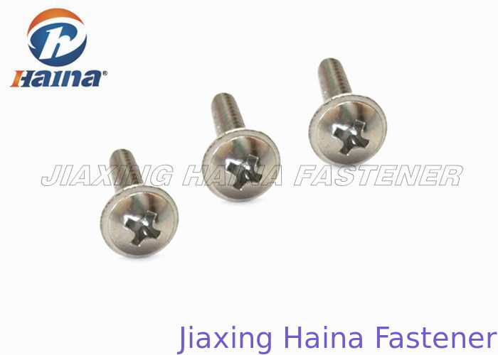 Stainless Steel Self Tapping Screws Cross Recessed With